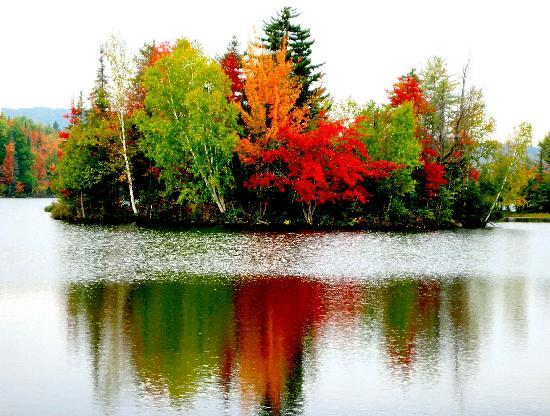 Albany, Estado de Nueva York: Fall Colors in S.E. Adirondacks