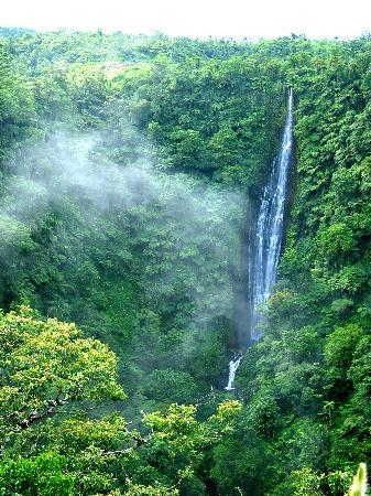 Apia, Ilhas Samoa: Incredible falls.  I lived in Samoa as a PC volunteer from 03-05 and I always had to stop here