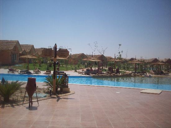 Jungle Aqua Park: Main pool