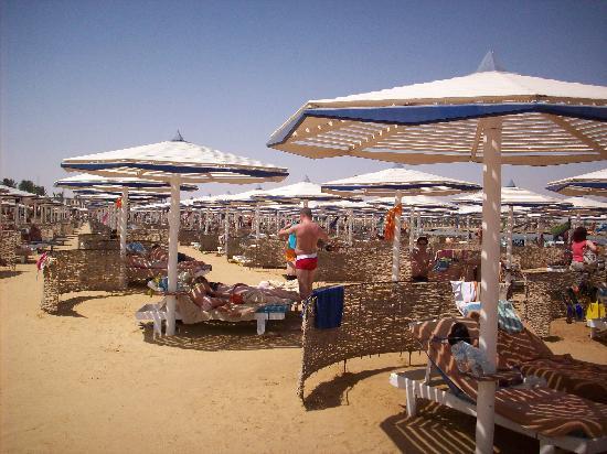 Jungle Aqua Park: Beach