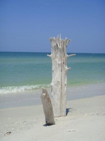 Imagen de Sanibel Island Lighthouse