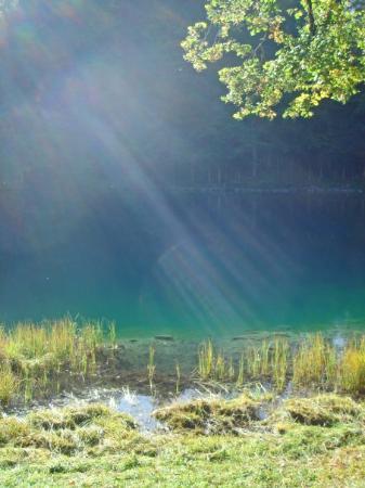 Guten Morgen Lieber Sonnenschein Picture Of Blausee