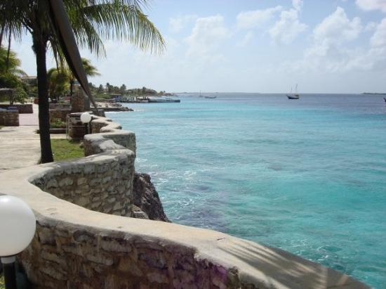 Slave hut on bonaire picture of bonaire caribbean tripadvisor - The dive hut bonaire ...