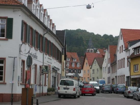The street outside the Hotel (Residenz Heidelberg on your right)