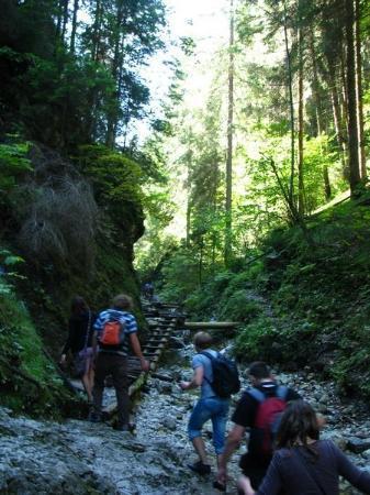 Dobsinska Masa, Slovačka: Podlesok, Slovakia Slovak paradise national park