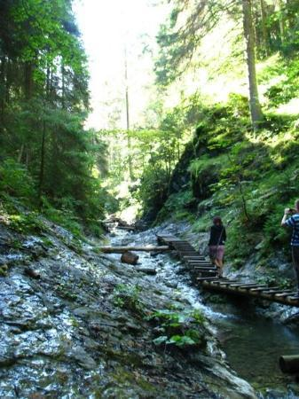 Dobsinska Masa, سلوفاكيا: Podlesok, Slovakia Slovak paradise national park