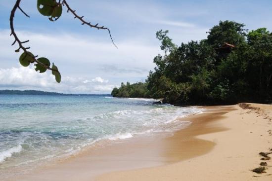 Tripadvisor Bocas Del Toro Panama: Picture Of Bocas Town, Isla