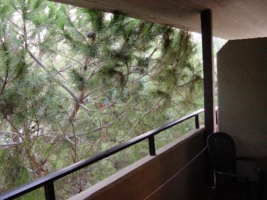 Fiesta Hotel Garden Beach: Sicht aus dem Balkon (2. Stock)