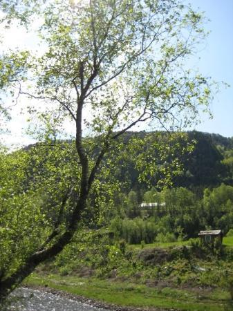 Foto Suldal Municipality