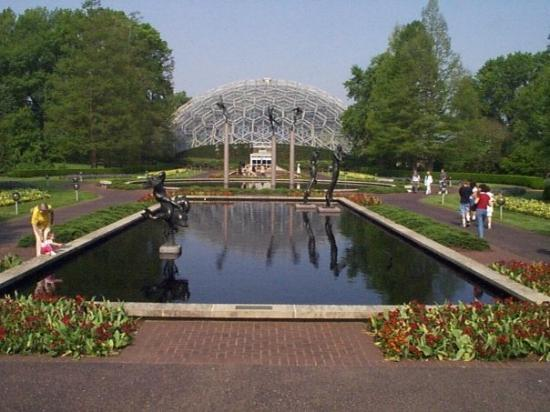 Chihuly Handblown Glass Globes In Pond Picture Of Missouri Botanical Garden Saint Louis