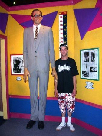 evan next to tallest man ever picture of surfers paradise gold