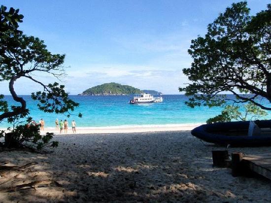 Similan Islands National Park Bungalows: Beach
