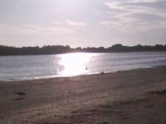 Marco Island Marina : tiger tail beach