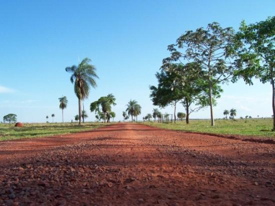 Bonito, MS: Vista de la entrada de la Estancia donde se hace el Buceo del Rio da Prata