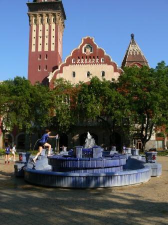 City Hall (Gradska kuca): Subotica Viječnica + Plava fontana