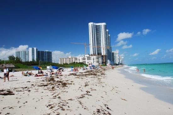 Miami Harbour Tour
