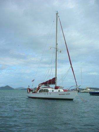 Wayward Sailor