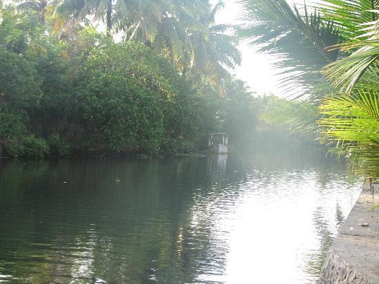 Coir Village Lake Resort: Backwater