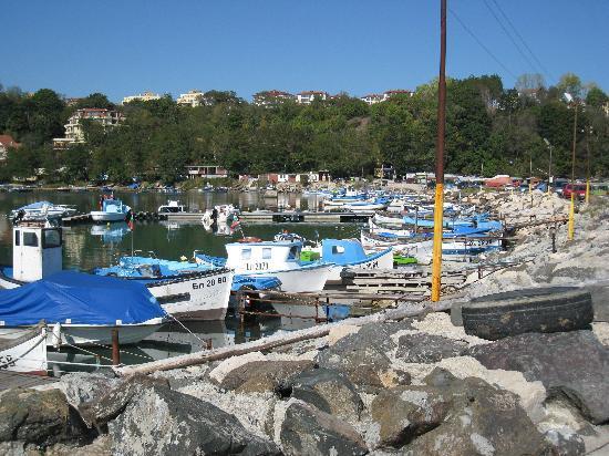 Byala, Βουλγαρία: Small harbour closeby