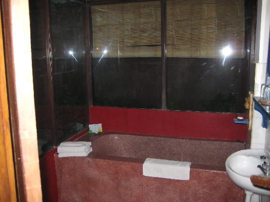 Hotel Puri Cendana: the glass-walled toilet & ceramic tub