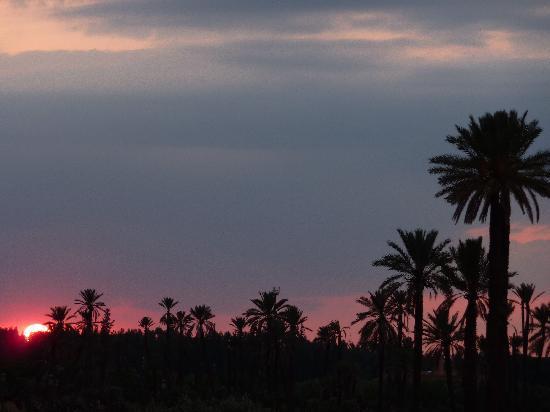 coucher de soleil, vue d'Amanjena