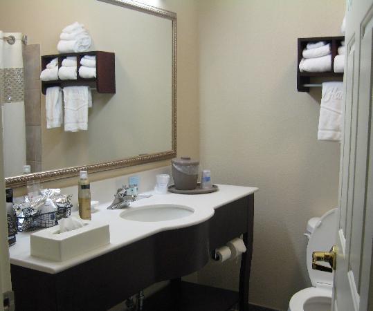 Hampton Inn Savannah -  I-95 North : Bathroom