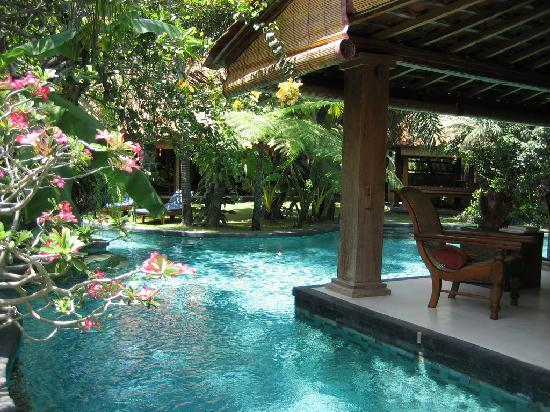 Villa Des Indes: Pool