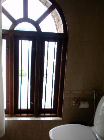 Kumarakom Lake Resort: vue depuis notre chambre