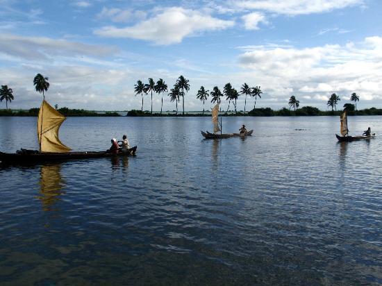 كوماراكوم ليك ريزورت: Backwaters in the morning