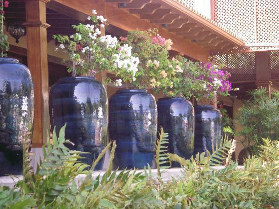 Hotel Botánico & The Oriental Spa Garden: Allée d'entrée du Spa Botanico