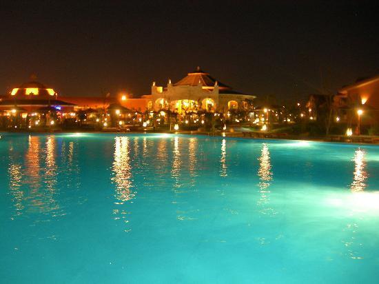 Jungle aqua park-night