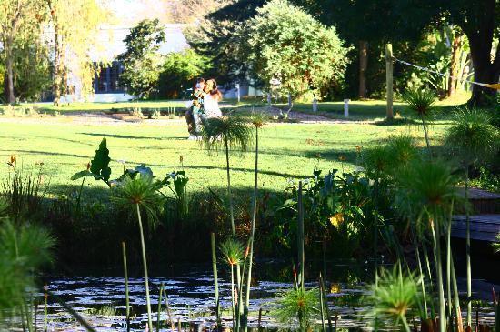 Bloomestate: laghetto