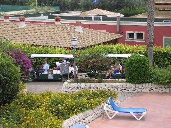 Baia Samuele Hotel Villaggio: ristorante visto dalla piscina