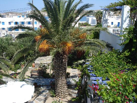 Pension Sofia : Our balcony view of the garden below and the beach ahead (just 2 min away!)