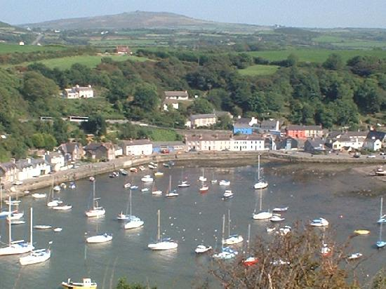 Cefn-y-Dre Country House Bed & Breakfast: Fishguard harbour with the Preselis behind