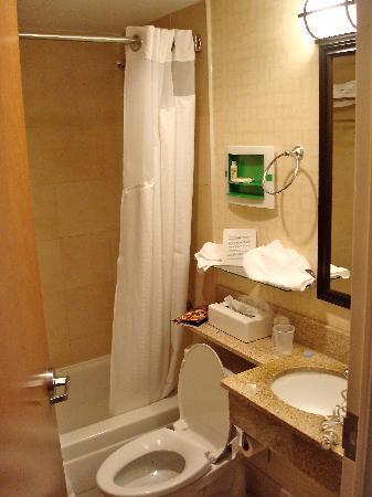 Holiday Inn NYC - Manhattan 6th Avenue - Chelsea: bagno