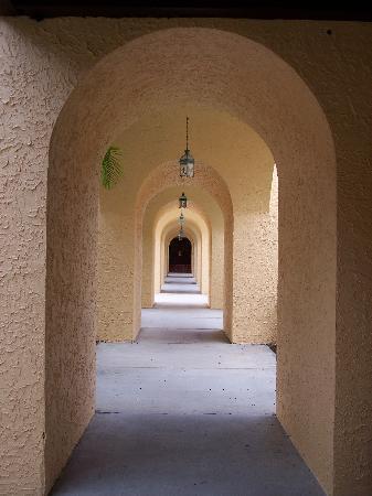 Courtyard Bradenton Sarasota/Riverfront: Walkway By Pool Area