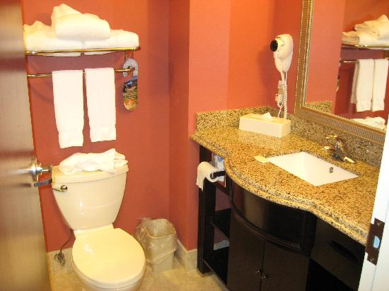 Holiday Inn Express Hotel & Suites Orlando South-Davenport: toilet, towels, and the sink