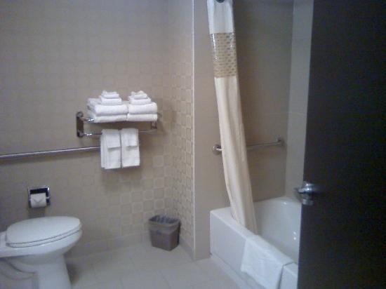 Hampton Inn & Suites by Hilton Edmonton/West : Bath