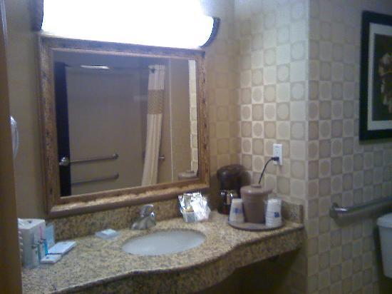 Hampton Inn & Suites by Hilton Edmonton/West : bathroom