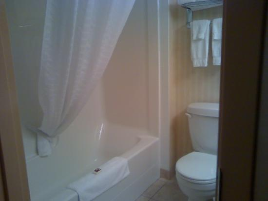 BEST WESTERN PLUS Meridian Hotel: Bath