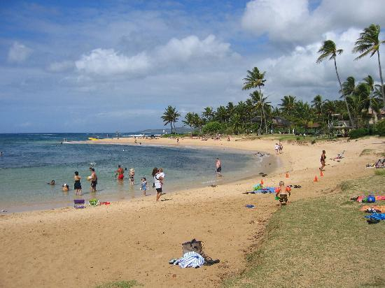 Poipu Beach Park : middle part was rocky but filled with fish