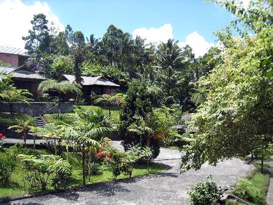 Highland Resort: in the garden