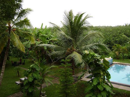 Shangri-Lanka Villa: view from room 2