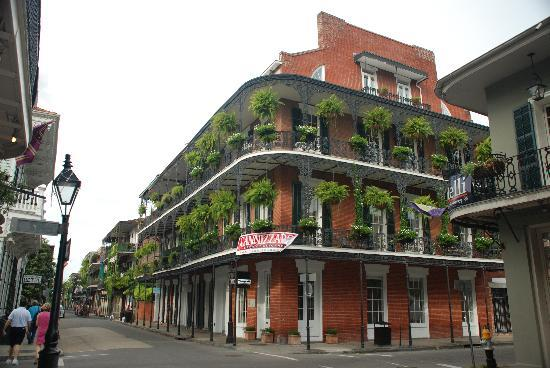 New Orleans, LA: Hanging gardens are everywhere in the city!