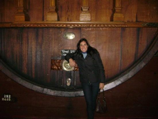 The Vines of Mendoza: BODEGA WEINERT
