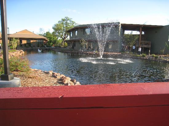Anderson, Kalifornia: I loved the water creek and the fountain with the swans