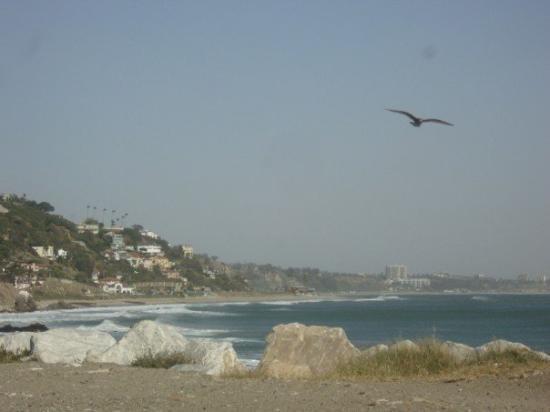 Malibu Lagoon State Beach: Santa Monica  Taken In Malibu...... Missing My West Cost