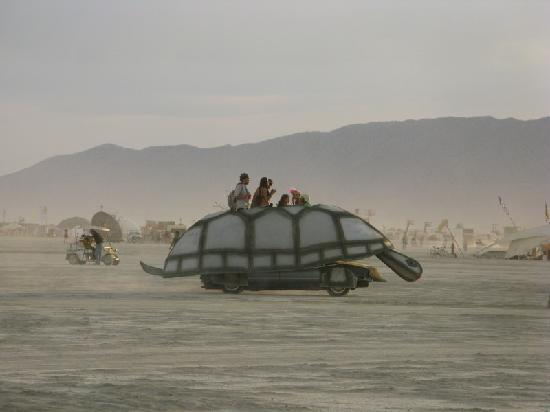 Black Rock City, NV: Ride the turtle