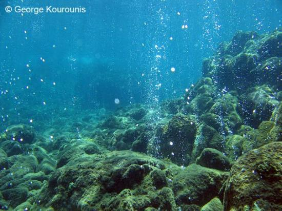 Розо, Доминика: Undersea volcanic gases seep through the ocean floor at Champagne Reef along the western shore o